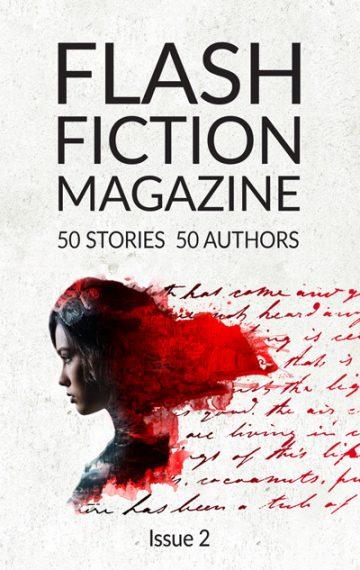 Flash Fiction Magazine – 2